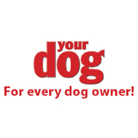Your Dog